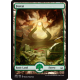 # 189 Forest Full Art